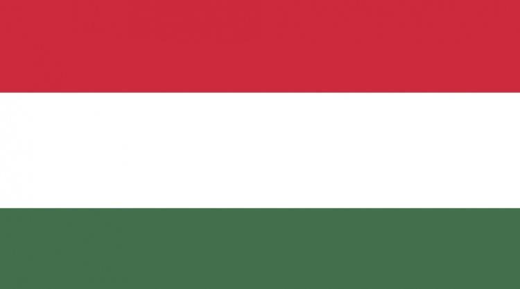 Медицинская страховка для поездки в Венгрию